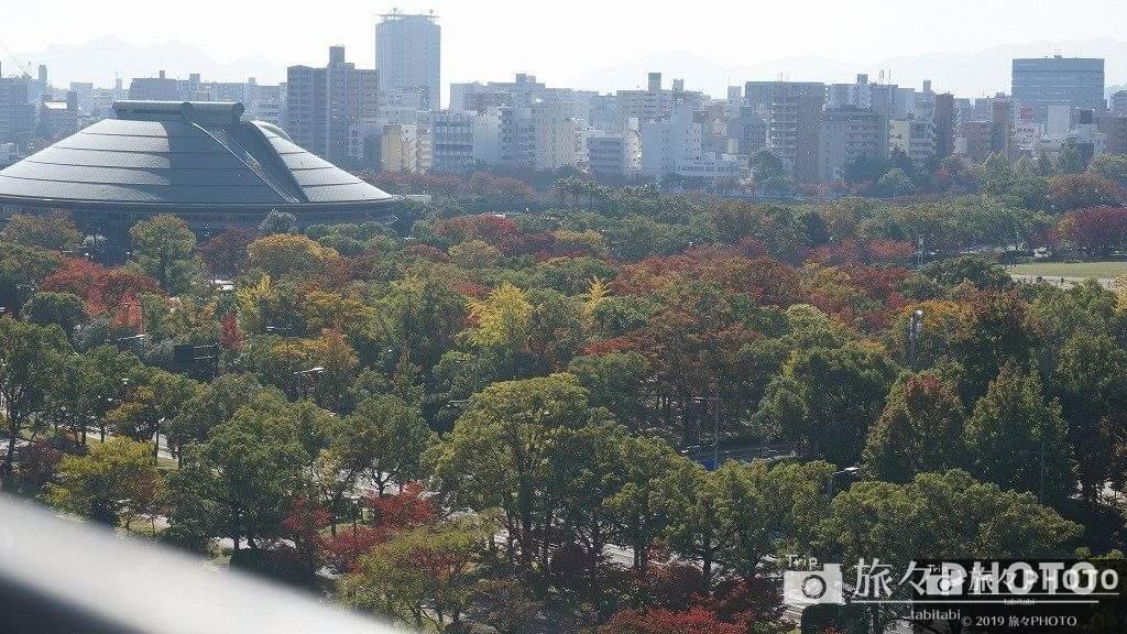 広島城の頂上から見た景色