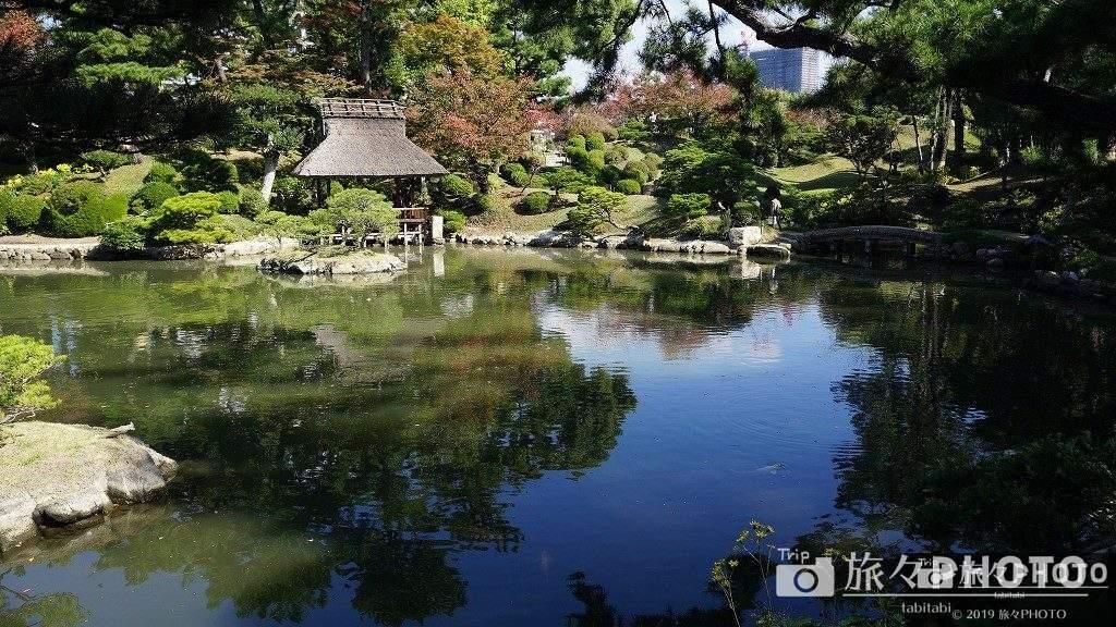 広島縮景園の池