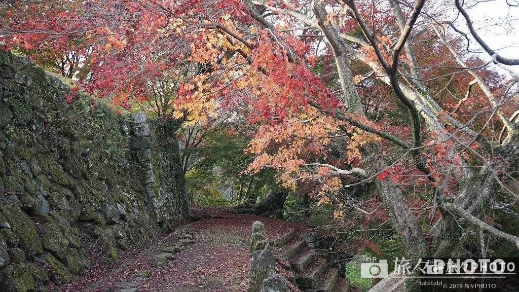 岡城跡の紅葉