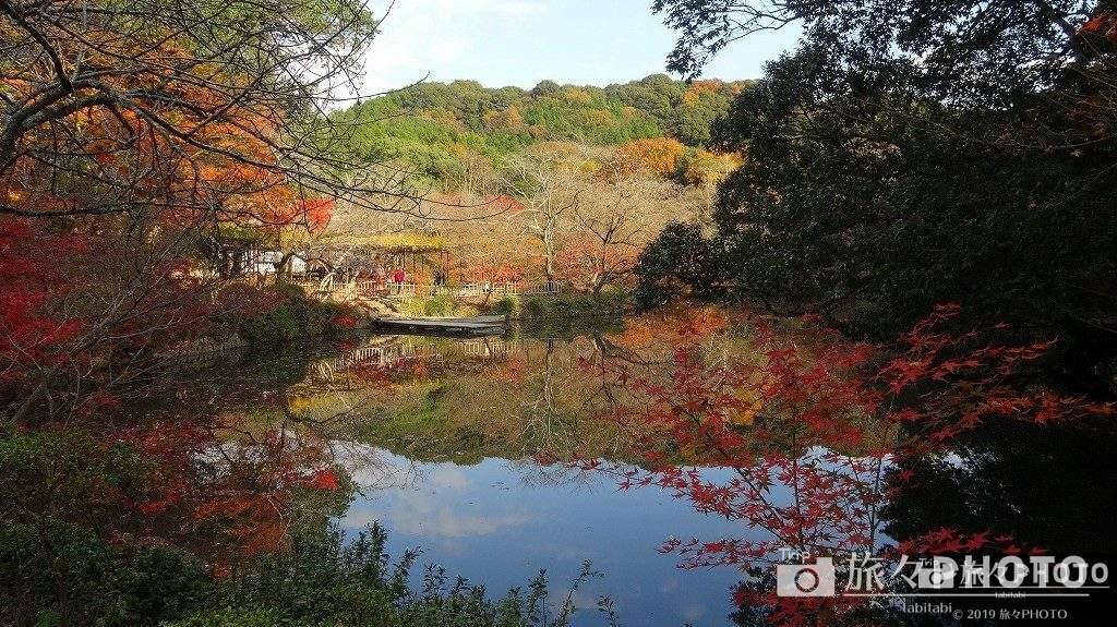 御船山楽園の紅葉の水面鏡