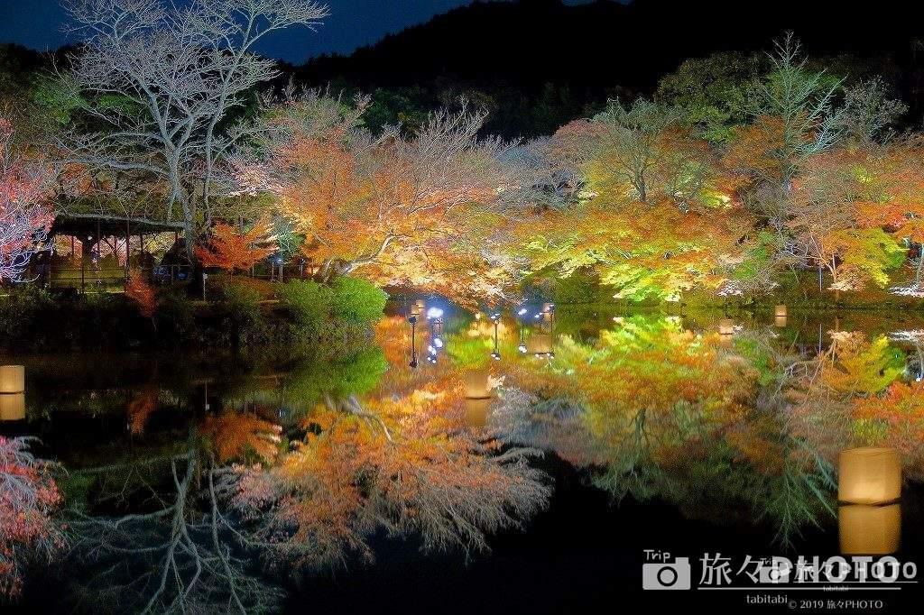 御船山楽園の紅葉のライトアップ