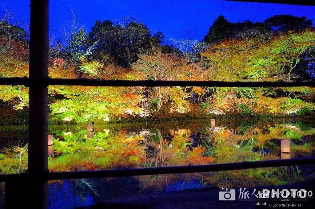 御船山楽園の茶室から見た紅葉のライトアップ