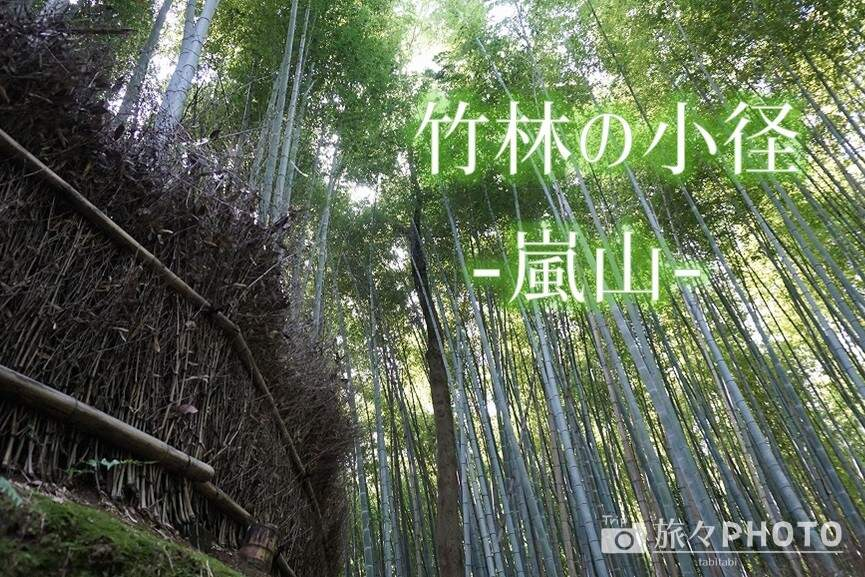 嵐山竹林アイキャッチ画像