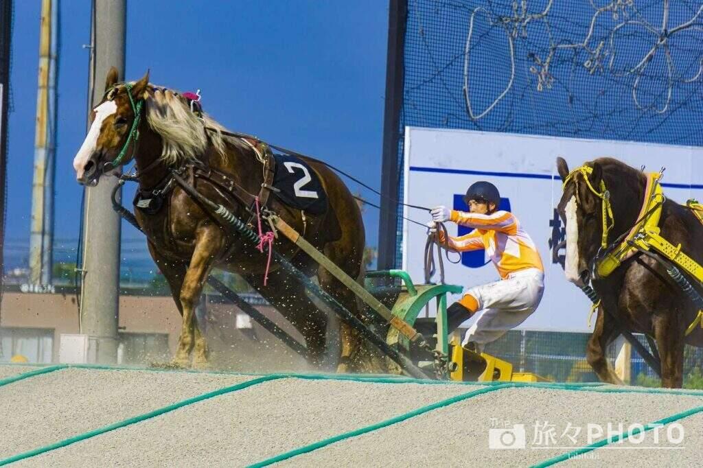 帯広競馬場ばんえい競馬ギャラリー