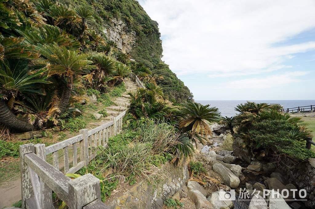 御崎神社階段