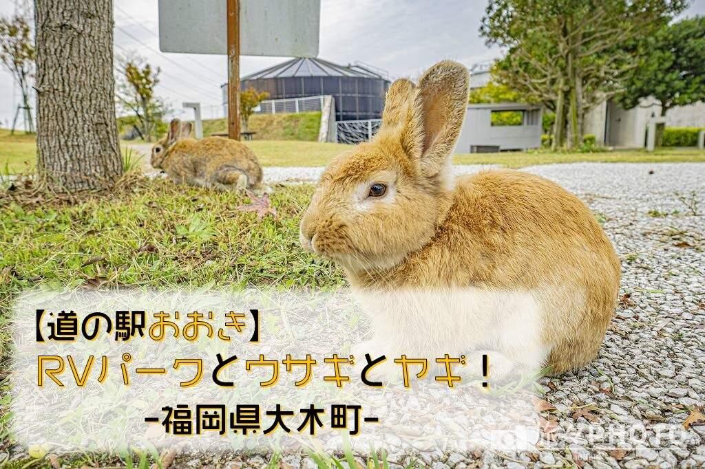 道の駅おおきアイキャッチ画像