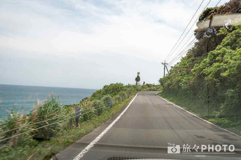 都井岬へ行く道