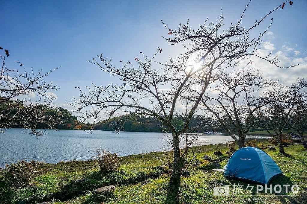 志高湖のキャンプ