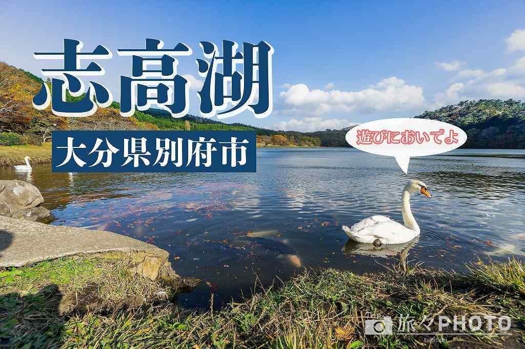 志高湖アイキャッチ画像