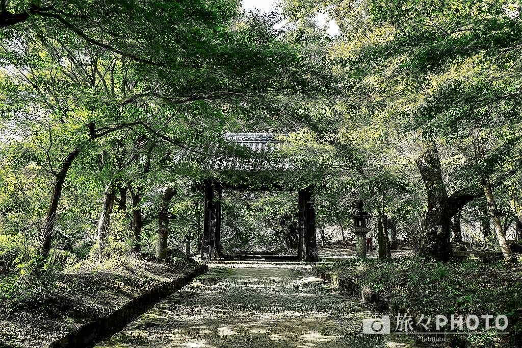 秋月城跡の黒門