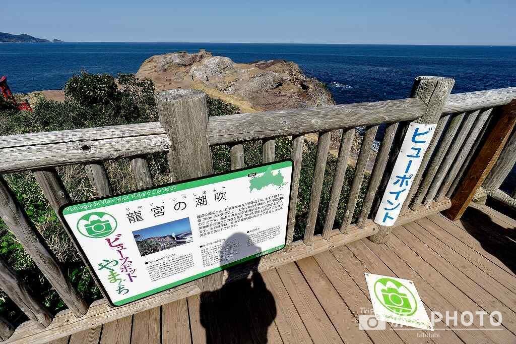 龍宮の潮吹 ビュースポット