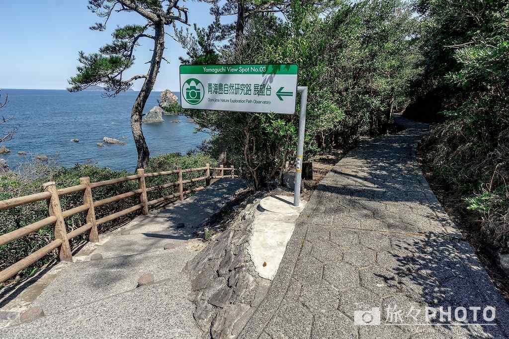 青海島展望台への道