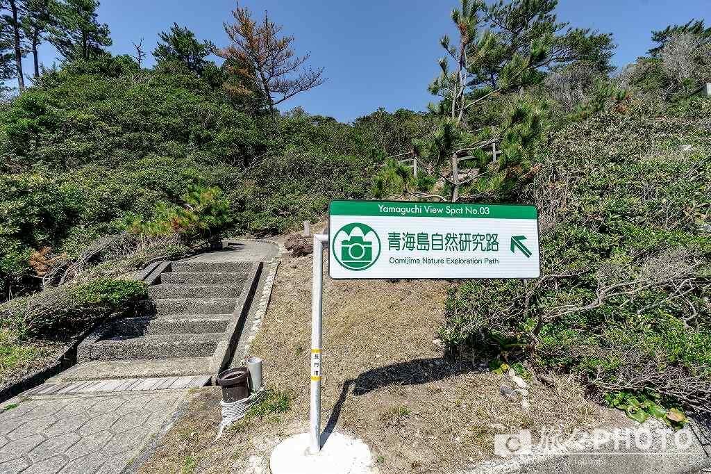 青海島展望台への道の入口