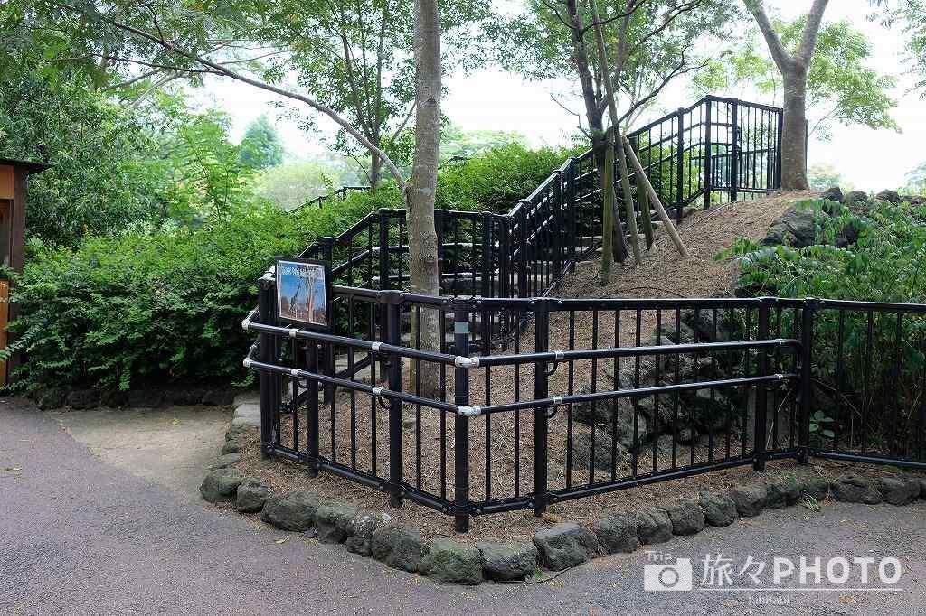 到津の森公園キリン展望台