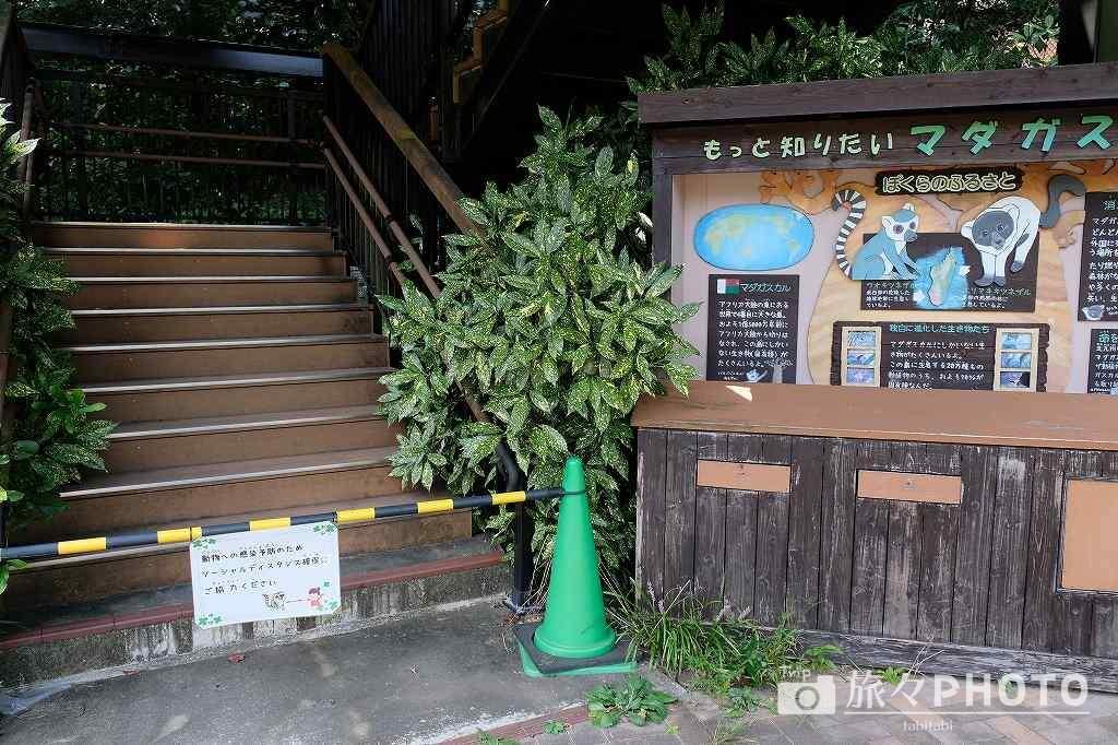 到津の森公園 コロナ対策