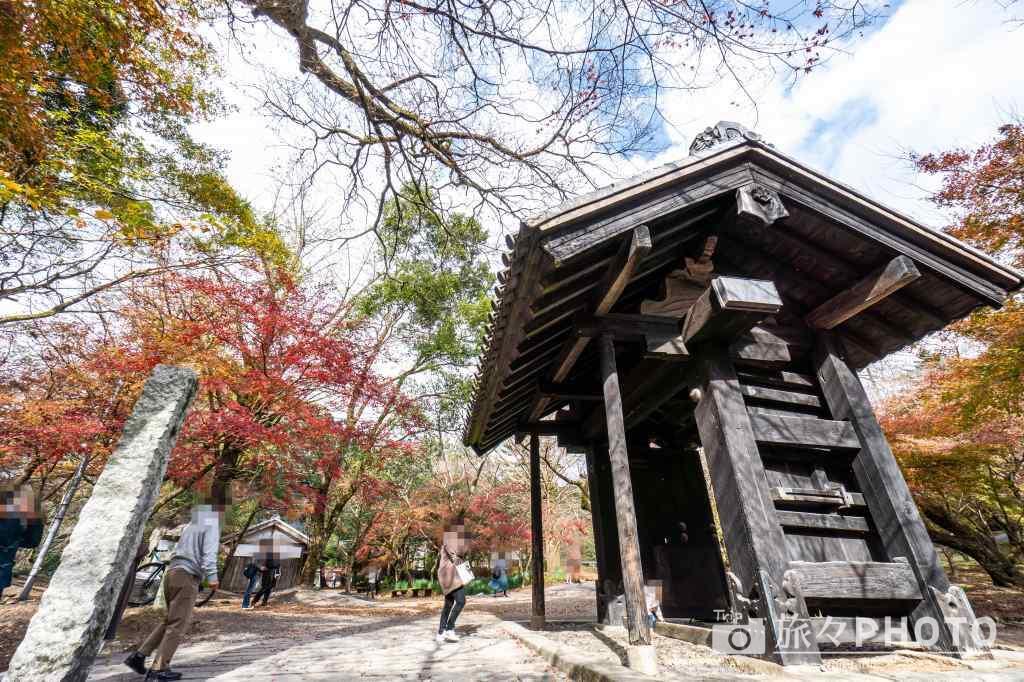 秋月城跡の黒門の紅葉