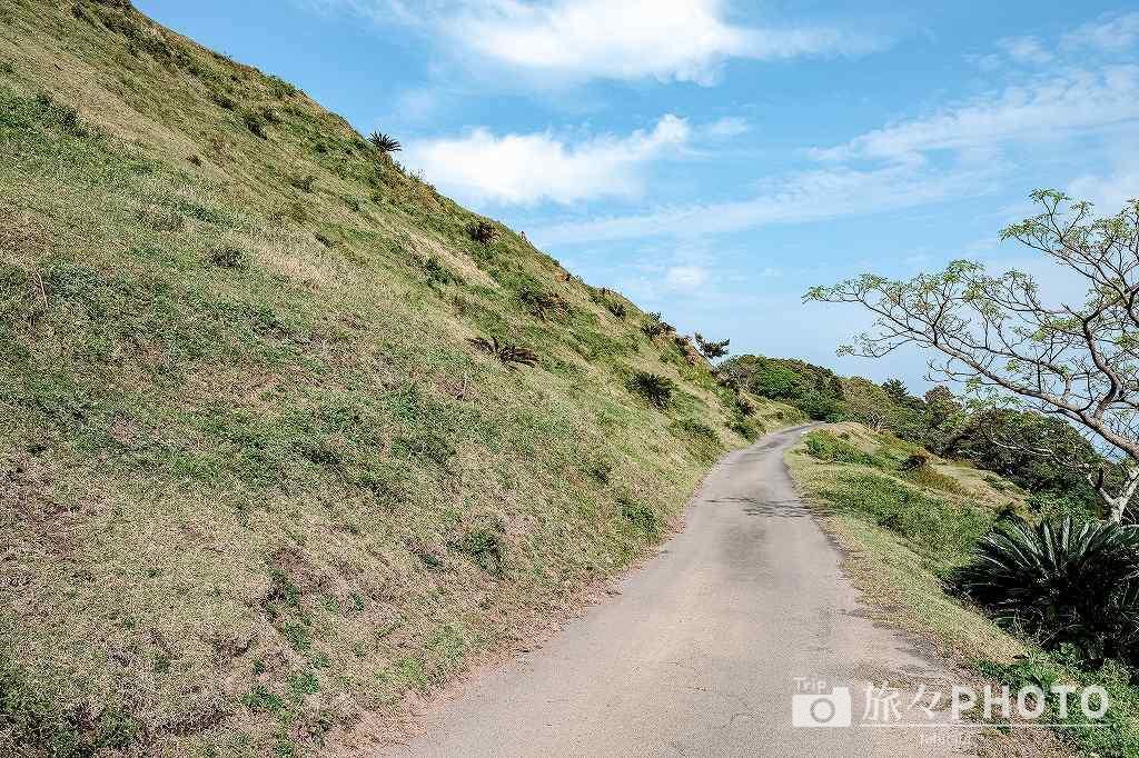 都井岬の扇山