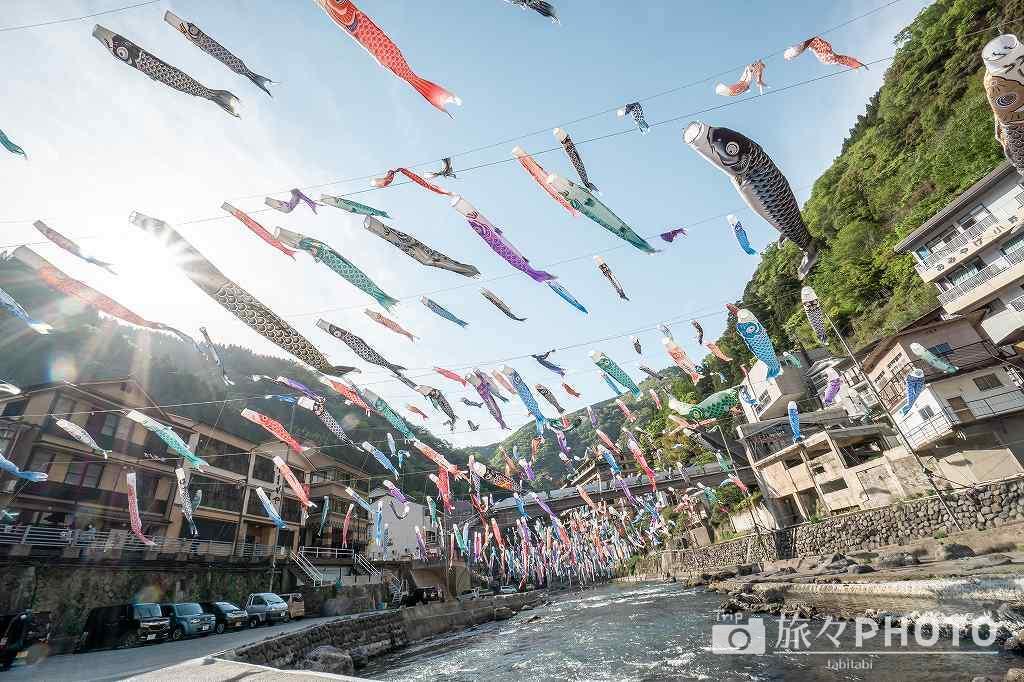 杖立温泉の鯉のぼり