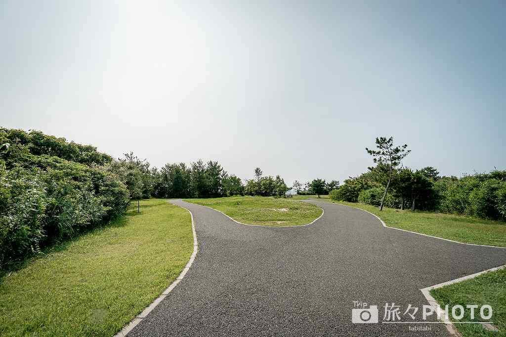 夏井ヶ浜はまゆう公園 の展望台